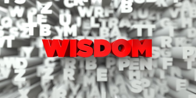 WISDOM -   3D stock image of Red text on white background